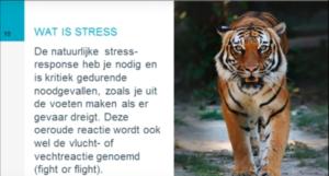 Presentatie voor medewerkers over stressvrij werken en balans